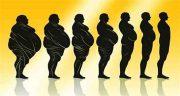 تعبیر خواب چاقی ، شدن شکم و پاها و صورت چاق شده بزرگ شدن هیکل اضافه وزن