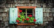 تعبیر خواب پنجره ، چوبی اتاق و خانه بدون پنجره و دیدن شکستن شیشه پنجره