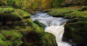 تعبیر خواب رودخانه ، جلوی خانه حضرت یوسف در کوه متلاطم و راه رفتن پر از ماهی