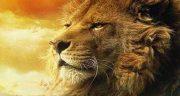 تعبیر خواب شیر جنگل ، ابن سیرین و حضرت یوسف و حرف زدن با شیر جنگل در خانه