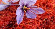 تعبیر خواب زعفران ، گرفتن چی میشه از دید امام صادق و حضرت یوسف و گل زعفران