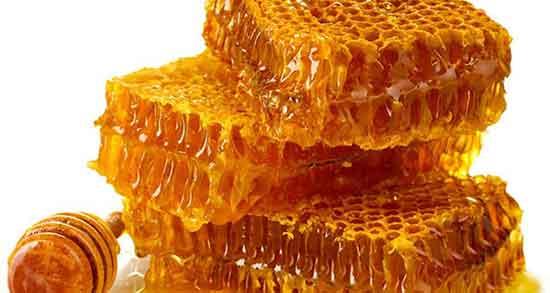 تعبیر خواب عسل حضرت یوسف ، ریختن و یافتن و خریدن عسل زرد و کندوی عسل روی درخت