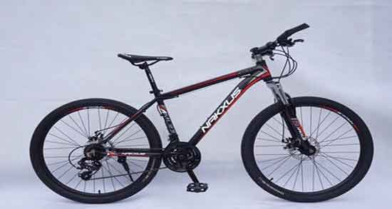تعبیر خواب دوچرخه ، خریدن در خواب و خراب شده و سواری مرده و یونگ بچه گانه