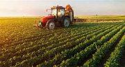 تعبیر خواب کشاورزی ، و برداشت محصول کشاورزی و مزرعه و شالیزار سرسبز