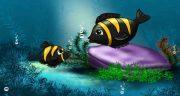 تعبیر خواب ماهی سیاه کوچولو ، قرمز و مرده در رودخانه و در خشکی و دریا منجمد