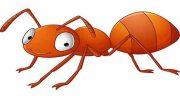 تعبیر خواب مورچه زرد ، حضرت یوسف پیامبر و امام صادق و گاز گرفتن و کشتن مورچه