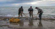 تعبیر خواب صید ماهی ، قزل آلا با دست و تور ماهیگیری بزرگ گرفتن از آب رودخانه