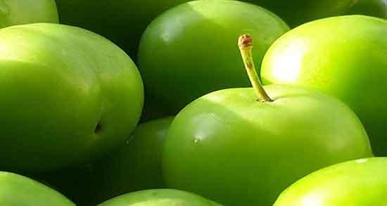 تعبیر خواب گوجه سبز ، ابن سیرین در بارداری و چیدن گوجه سبز از درخت و خوردن بزرگ