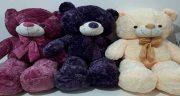 تعبیر خواب عروسک خرس بزرگ ، و هدیه گرفتن عروسک خرس در خانه چیست