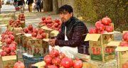 تعبیر خواب انار خریدن ، و خوردن انار قرمز برای زن باردار و دیدن درخت آن