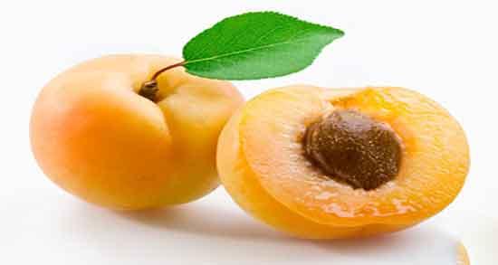 تعبیر خواب زردآلو نرسیده ، روی درخت در بارداری خشک چیست حضرت یوسف