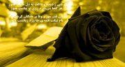 تعبیر خواب مرگ عمه ، معنی دیدن مرگ عمه زنده و فوت ده در خواب چیست
