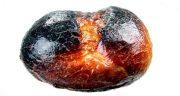 تعبیر خواب نان سوخته چیست ، و سوختن نان در تنور حضرت یوسف