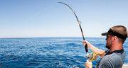 تعبیر خواب چوب ماهیگیری ، دیدن چوب ماهیگیری + تور و قلاب ماهیگیری