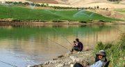 تعبیر خواب ماهیگیری در رودخانه ، ماهی گرفتن از آب رودخانه ابن سیرین