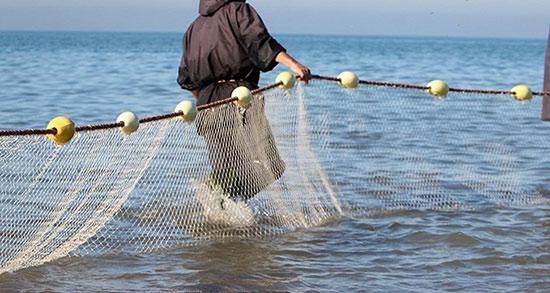 تعبیر خواب تور ماهیگیری ، بزرگ + تعبیر خواب ماهیگیری با تور در دریا