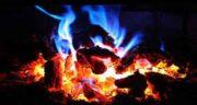 تعبیر خواب آتش گرفتن درخت ، معنی آتش گرفتن درخت در خواب ما چیست