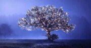 تعبیر خواب نور درخشان ، معنی دیدن پرتو نور درخشان در خواب های ما چیست