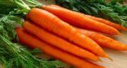 تعبیر خواب هویج پخته ، معنی دیدن هویج پخته در خواب های ما چیست