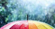 تعبیر خواب باران در حرم امام رضا ؛ معنی دیدن باران در حرم امام رضا در خواب چیست