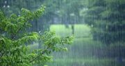 تعبیر خواب باران شدید حضرت یوسف ؛ امام صادق و ابن سیرین چیست
