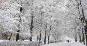 تعبیر خواب برف و بهمن ؛ معنی دیدن برف و بهمن در خواب های ما چیست
