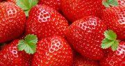 تعبیر خواب خوردن توت فرنگی ؛ معنی توت فرنگی خوردن در خواب ما چیست