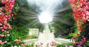 تعبیر خواب در بهشت بودن ، معنی دیدن خود در بهشت در خواب چیست