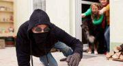تعبیر خواب کتک زدن دزد ؛ معنی کتک زدن دزد در خواب های ما چیست