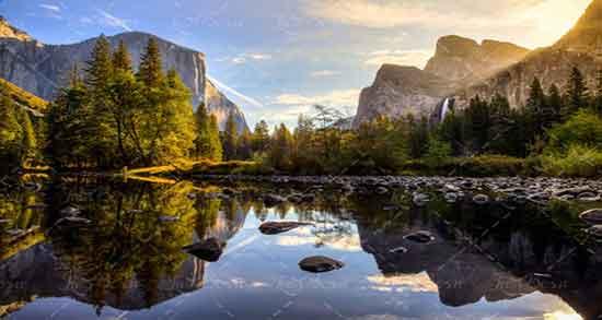تعبیر خواب کوه و درخت ؛ معنی دیدن کوه و درخت در خواب های ما چیست