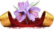 تعبیر خواب باغ زعفران ، معنی دیدن باغ زعفران در خواب های ما چیست