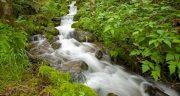 تعبیر خواب چشمه آب در کوه ، معنی دیدن چشمه آب در کوه در خواب ما چیست