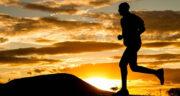 تعبیر خواب دویدن حیوانات ، معنی دیدن دویدن حیوانات در خواب های ما چیست