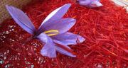 دیدن نبات و زعفران در خواب ، معنی دیدن نبات و زعفران در خواب های ما چیست