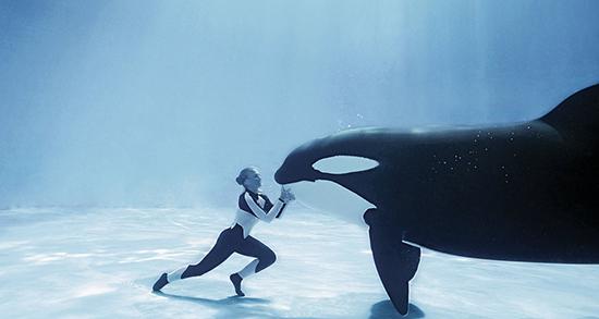 تعبیر خواب نهنگ در رودخانه ، معنی دیدن نهنگ در رودخانه در خواب های ما چیست