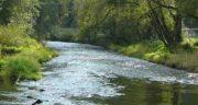 تعبیر خواب عبور از رودخانه ، معنی دیدن عبور از رودخانه در خواب های ما چیست