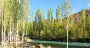 تعبیر خواب راه رفتن در آب رودخانه ، معنی دیدن راه رفتن در رودخانه در خواب چیست