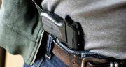 تعبیر خواب شکار کبک با تفنگ ، دیدن شکار کبک با تفنگ در خواب های ما چیست