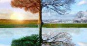 تعبیر خواب بهار در زمستان ، معنی دیدن بهار در زمستان در خواب های ما چیست