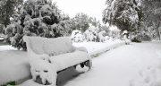 تعبیر خواب زمستان چیست ، معنی دیدن زمستان در خواب های ما چیست