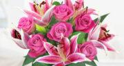 تعبیر خواب گل بنفش رنگ ، معنی دیدن گل بنفش رنگ در خواب های ما چیست