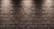 تعبیر خواب کپک زدن دیوار ، معنی کپک زدن دیوار در خواب های ما چیست