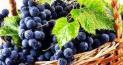 خواص انگور قرمز ؛ مضرات و خواص انگور قرمز در طب سنتی گازدار