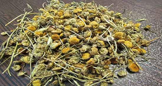 بابونه خشک ؛ روش خشک کردن گیاه بابونه و طریقه مصرف
