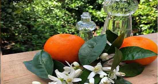 خواص بهار نارنج ؛ گرفتن تلخی دمنوش بهار نارنج برای فشار خون و اعصاب