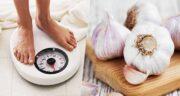خواص سیر خام ناشتا برای لاغری ؛ کاهش وزن با خوردن سیر خام به صورت ناشتا