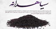 سیاه دانه در طب سنتی ؛ خواص سیاه دانه از نظر طب سنتی