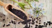 سیاه دانه را چگونه بخوریم ؛ آشنایی با روش صحیح استفاده از سیاه دانه