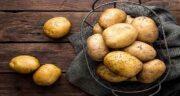خواص سیب زمینی ؛ سرخ کرده و خام و بنفش در بدنسازی برای کودکان پوست و مو