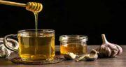 طرز تهیه سیر و عسل ؛ آشنایی با روش تهیه معجون سیر و عسل